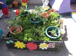 Garden in bloom competition – Huge success!